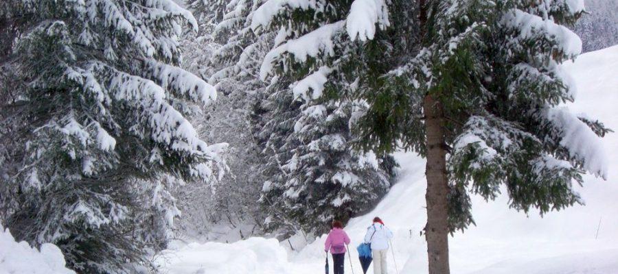 Winter in Balderschwang.
