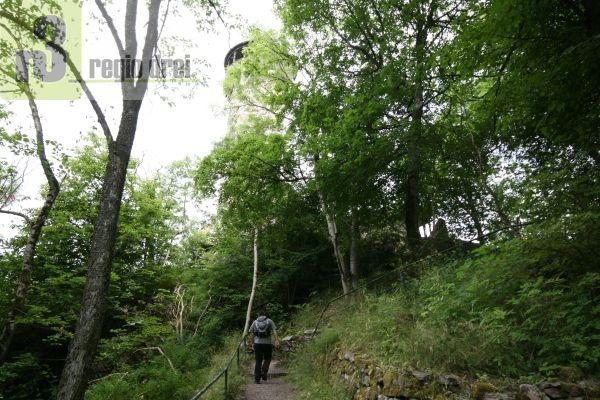 Wandern aud dem Saar-Hunsrück-Steig