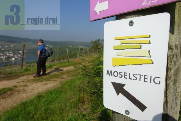 Wanden auf dem Moselsteig von Nittel nach Konz.