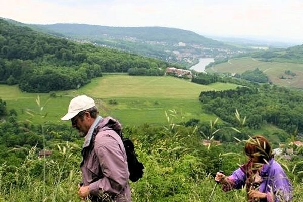 Wandern zu den Orchideen im Dreiländereck bei Perl an der Obermosel.