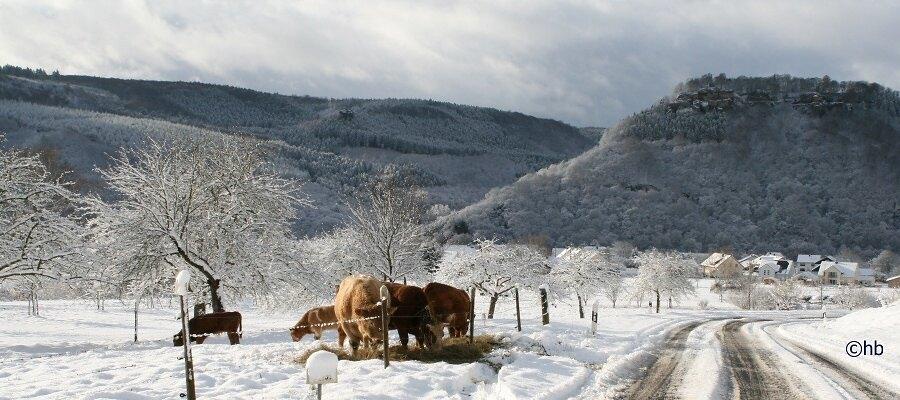 Serrig an der Saar im Winter