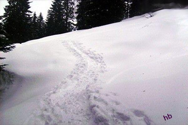 Im ungespurten und steilerem Gelände geht es durch die Winterlandschaft zur Burgl-Hütte.. Foto: H. Bruxmeier