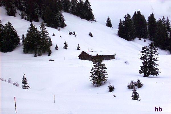 Die Burgl-Hütte im Bregenzerwald  (1430 Meter Höhe) Foto: H. Brtuxmeier