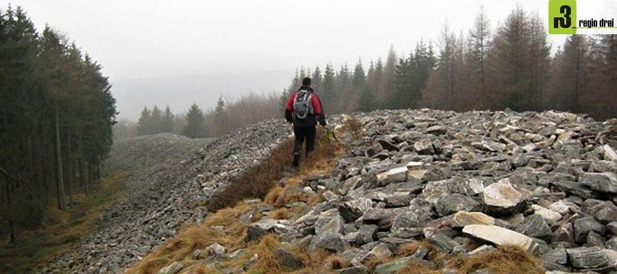 Wandern auf dem Dollberg - Von Hermeskeil nach Muhl
