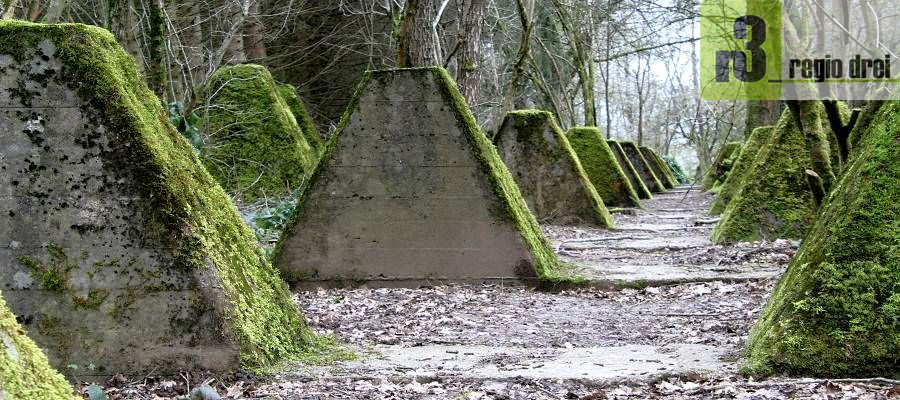 Höckerlinien-Weg Orscholz