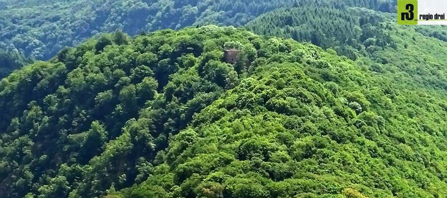 Die Burgruine Montclair liegt auf einem von der Saarschleife umschlossenen Bergrücken und ist ein beliebtes Wanderziel.
