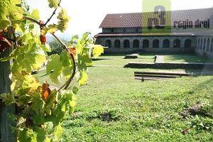 Inmitten von Weinbergen: Villa Urbana in  Longuich-Kirsch. Foto: regiodrei/Archiv
