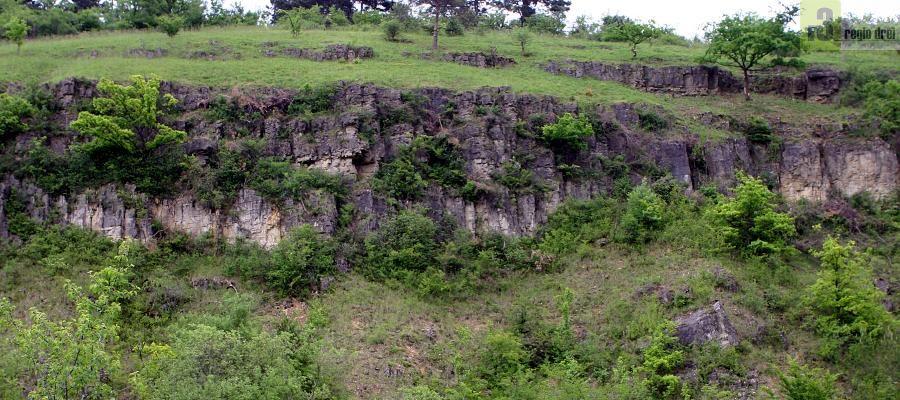hemaliges Steinbruchgelände im Dreiländereck bei Apach/Perl. Teil des deutsch-französischen Naturschutzgebietes mit einer eine Vielzahl von Orchideenarten. Regiodrei/Foto: H. Bruxmeier