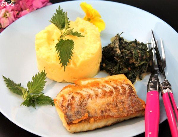 Kochen mit Lotte und Günter