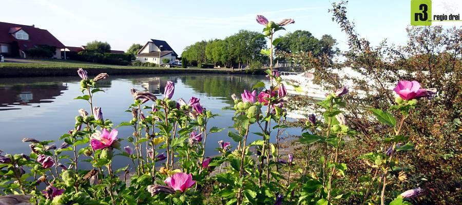 Der Hafen, in dem die Hausboot-Basis Hesse liegt, ist der Ausgangspunkt der Kanalfahrt.