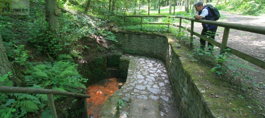 Römischer Sauerbrunnen im Dreisbachtal, am linken Moselufer zwischen Mülheim und Piesport.