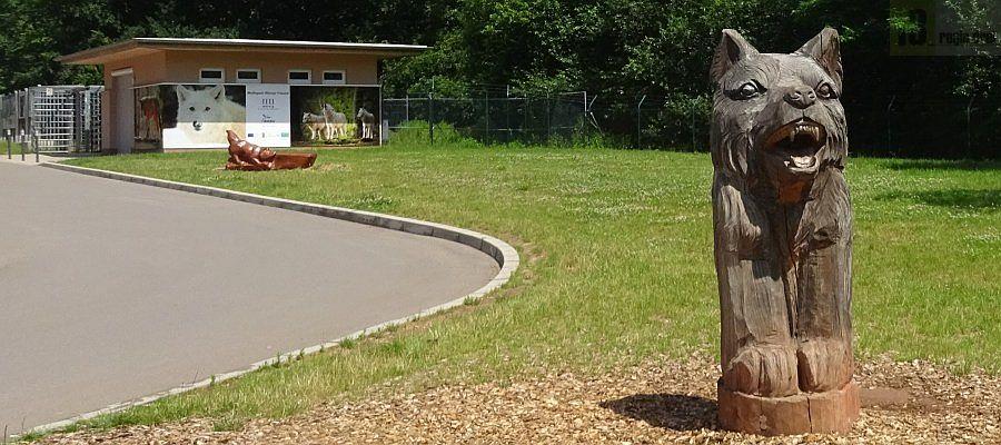 Der Wolfspark in Merzig ist weit über die Grenzen der Region bekannt. Eigentümer und Betreiber des Wolfsparks Werner Freund ist die Kreisstadt Merzig. Auf dem Foto ist der Eingangsbereich der weitläufigen Anlage  zu sehen. Der Besuch ist kostenfrei. Foto: regiodrei