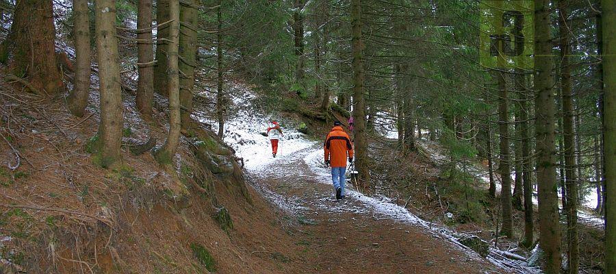 Wandern auf dem Zeitweg ( Höhenweg) in Balderschwang.