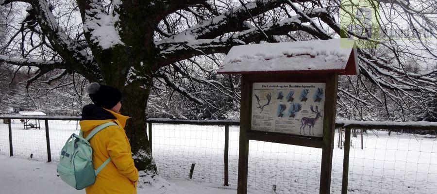 Wild- und Wanderpark Weiskirchen