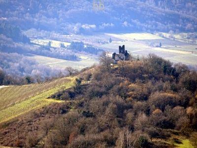 Klosterkirche Wolf (Ruine).