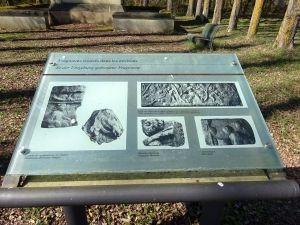 informationstafeln  geben Einblicke in die Rebkultur an der Obermosel. Foto: rg/hb