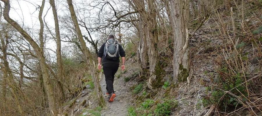 Die 13. Etappe des Moselsteig führt die Wanderer über zahlreiche Pfadpassagen entlang der Hangkante von Traben-Trarbach nach Reil.