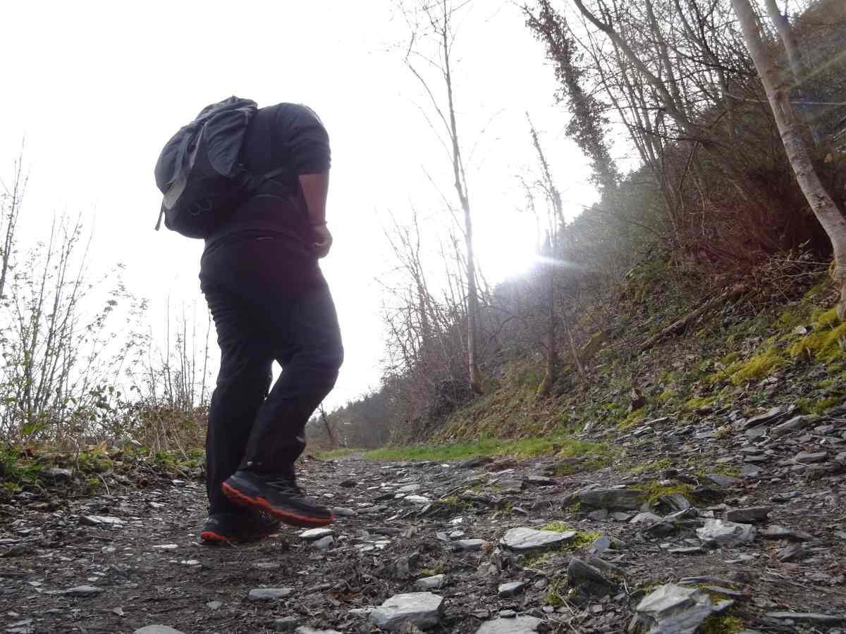 Wandern auf dem Moselsteig: Von Traben-Trarbach nach Reil