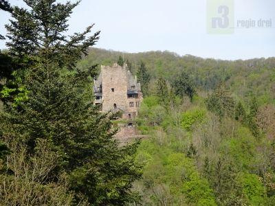 Blick auf die Burg Arras. Fotopunkt: Offene Schutzhütte am Leo-Felsen.
