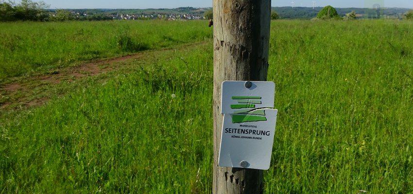 """Ein 12 Kilometer langen Wanderweg führt auch über den 440 Meter hoch gelegenen """"Eiderberg""""."""