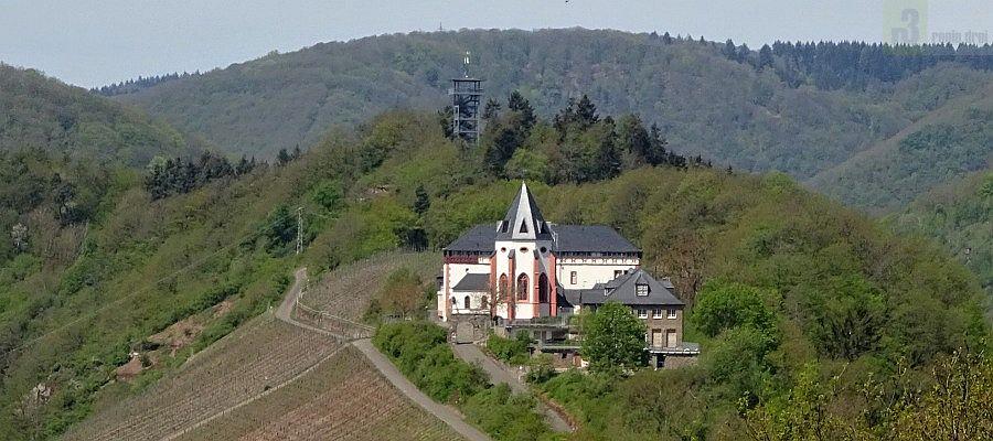 Mosel_Panorama